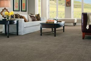 Carpets from Legends Flooring & Interior Walsenburg, Southern Colorado